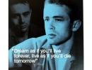 """James Dean \""""Dream\"""""""