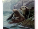 Otters on Canvas