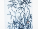 Art in Vancouver - The Living Earth - Labrador Tea