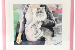 pink-persian-cat-01