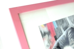 pink-persian-cat-02