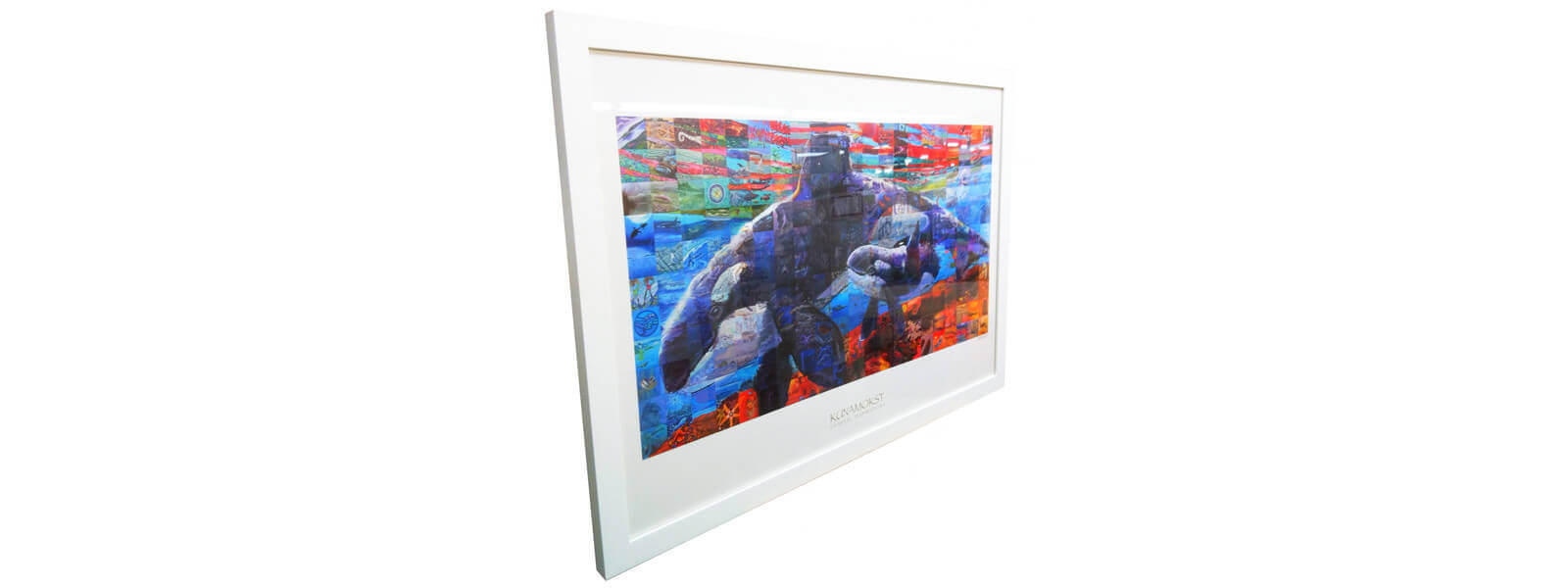 HS-orca-poster-in-frame